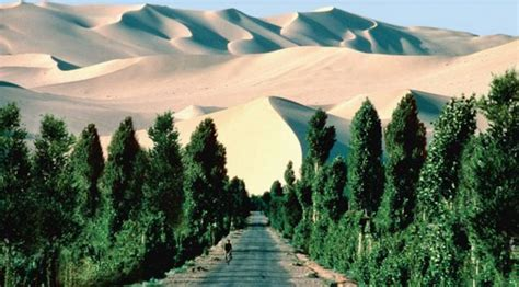 Great Green Wall — Atlas of the Future