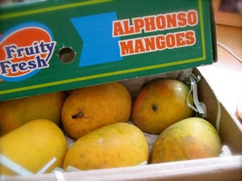Where can I get the best mangoes in Pune? - Quora